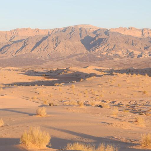 panorama of the Arabah